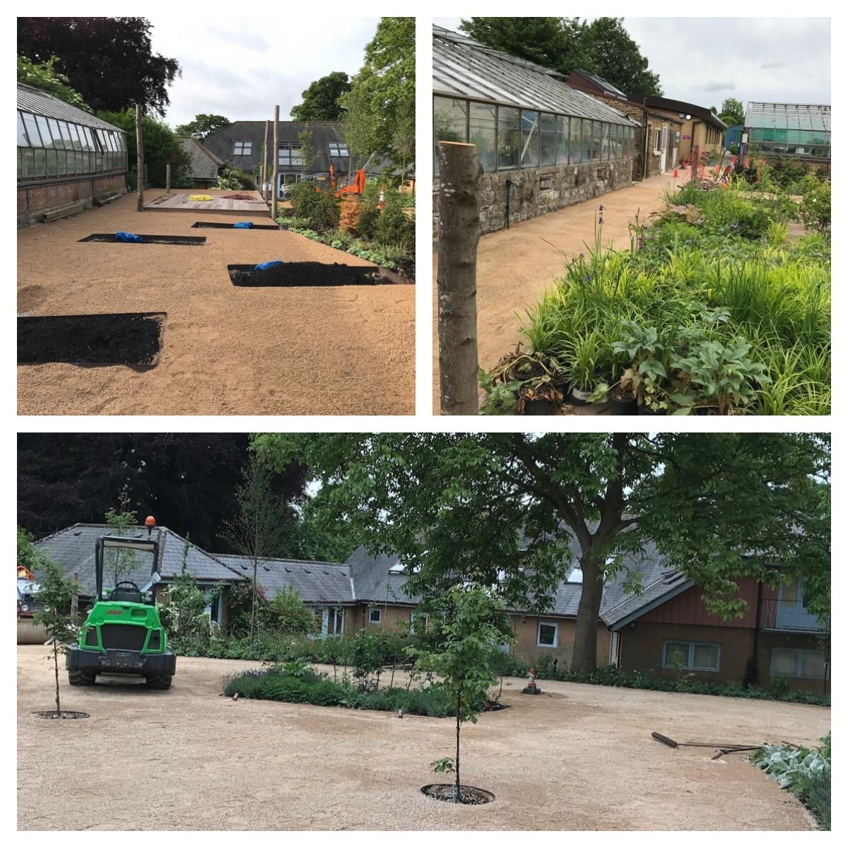 Blackthorn Healing Garden