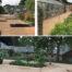 Blackthorn Healing Garden – latest update